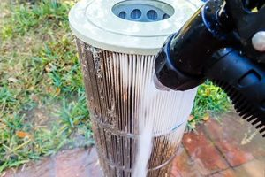 pool-filter-cleaning